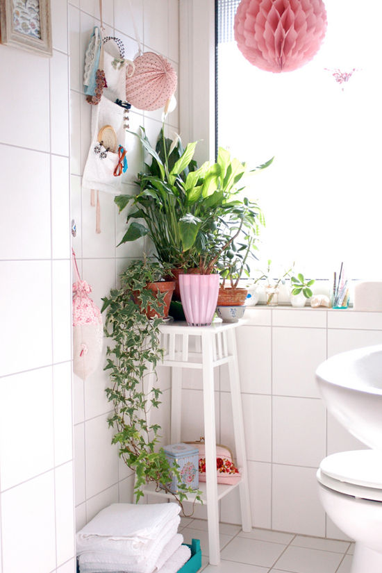 plants-bathroom-550