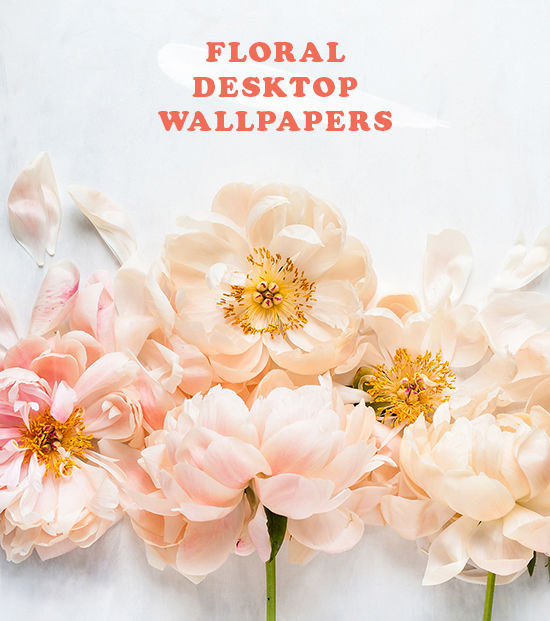 D E S I G N L O V F T FLORAL DESKTOP WALLPAPERS